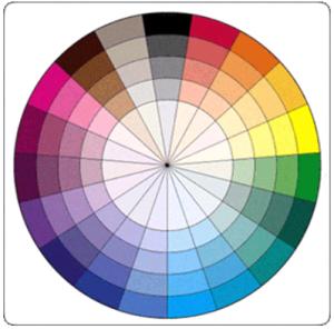 Eyeshadow Color Wheel